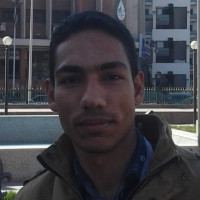 Rimon-1195282, 30 from Cairo, EGY