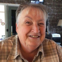 Sue, 65 from Cedar Springs, MI